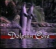 Dolphin Cove (1989)